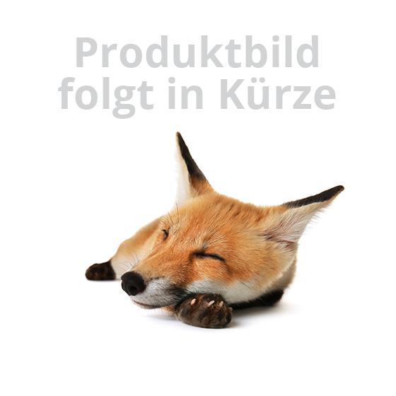Kleinhunde- / Katzenklappe für Drehtüren